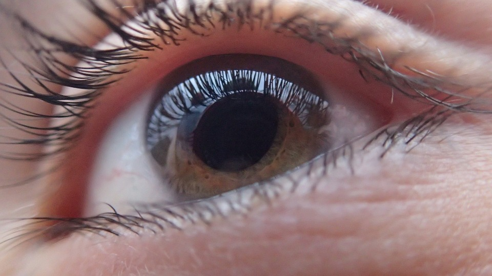 Enfermedades comunes ojos